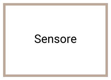 Sensore